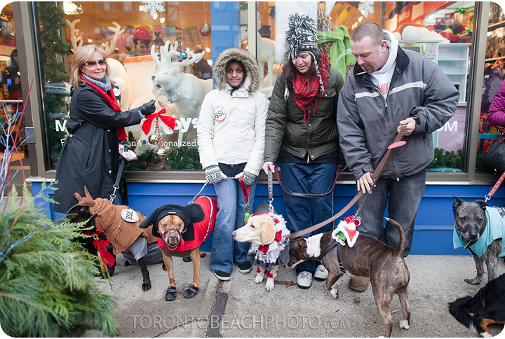 beaches-jingle-bells-Christmas-dog-walk8