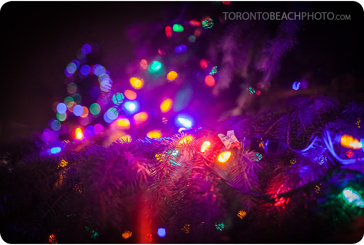 lions-tree-lighting-2012-22